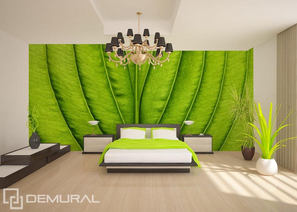 Fotomurale Spazio verde - sulla parete - Fotomurali vegetali - Demural