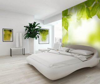... verde carta da parati fotomurali camera da letto fotomurali demural