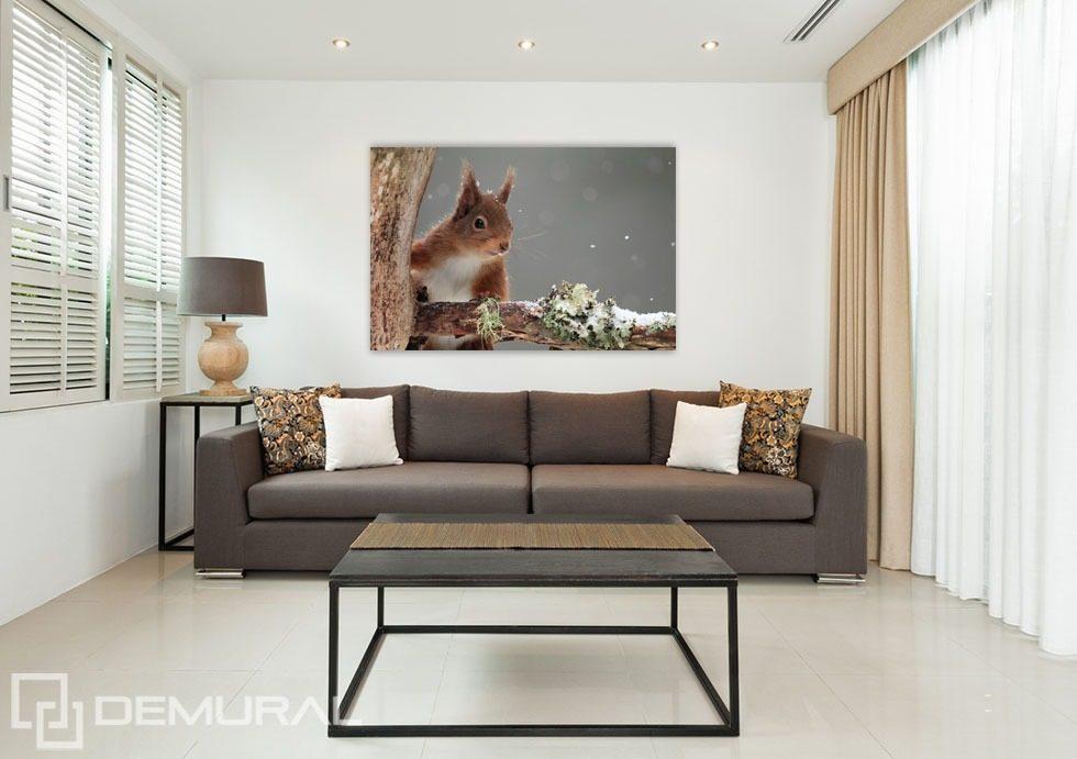 Poster Giganti Per Camere Da Letto : Scoiattolo adorabile poster per il salotto poster demural