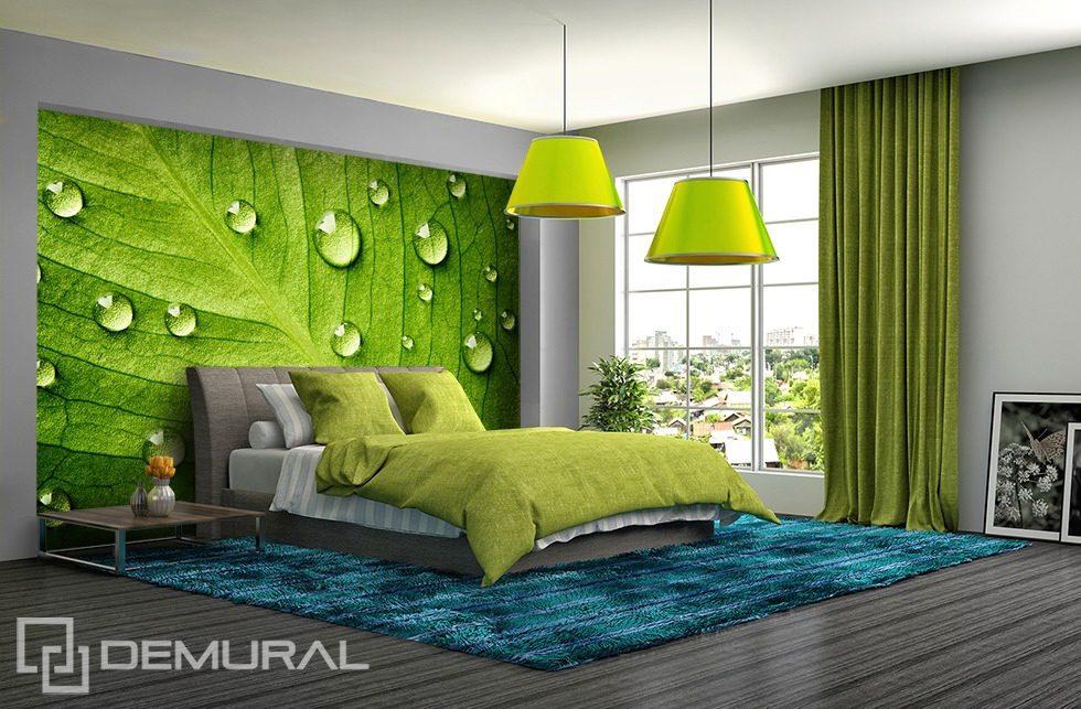 pareti verdi camera da letto: idee per colori di pareti la camera ... - Pareti Verdi Camera Da Letto